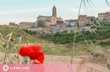 Dos pobles de Lleida rehabilitaran i llogaran habitatges en desús per atreure-hi famílies