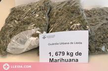 Detingut mentre anava en bicicleta per Lleida amb més d'1,6 quilos de marihuana a la motxilla