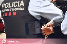Detingut un jove per diversos robatoris a Lleida