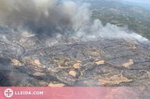 Rebrotem finalitza el repartiment d'ajuts als afectats de l'incendi de la Ribera d'Ebre