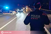 Detingut el conductor que va fugir a peu després de causar un accident mortal al Pla d'Urgell
