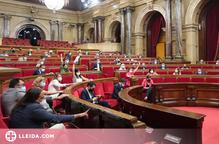 El Govern aprova crear el Consell de la Catalunya Exterior