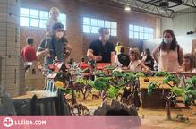 Unes 2.500 persones visiten PlaymoPalau, la Fira de Clicks del Pla d'Urgell