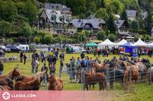 La Val d'Aran tornarà a celebrar enguany les fires ramaderes