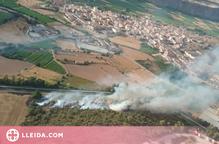 Incendi de vegetació a Artesa de Segre