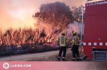 Un incendi crema 3 hectàrees a la Bordeta