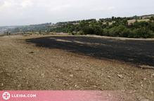 Crema una hectàrea de vegetació agrícola a la Segarra