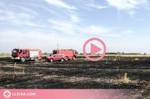⏯️ Extingit un incendi de vegetació a l'Urgell