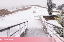 ⏯️ Consells per protegir-nos de nevades i glaçades