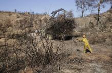 La Diputació destina 250.000 euros a 53 municipis per prevenir incendis