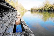 Endesa incompleix el cabal ecològic legal que garanteix la vida piscícola al riu Flamisell