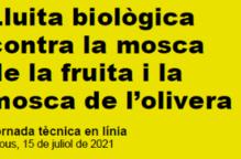 Lluita biològica contra la mosca de la fruita i la mosca de l'olivera