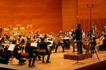 Concert Territori - Tardor de la OJC
