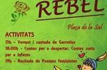 Dia del llibre rebel