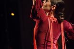 Mariona Puigdemasa flamenco