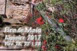 Festa major d'Alguaire 2017