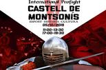 Torneig Internacional de Combat Medieval