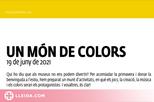 Un món de colors