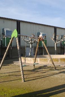 Obres per millorar la seguretat al parc del poliesportiu de Golmés