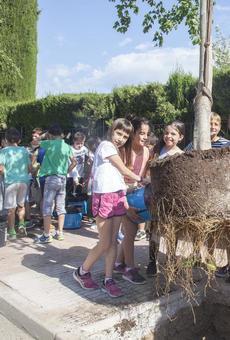 Escolars dels dos col·legis d'Agramunt planten arbres