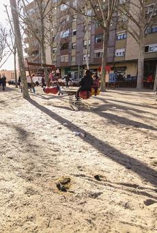 Queixes per excrements de gos en un parc infantil de Cappont a Lleida