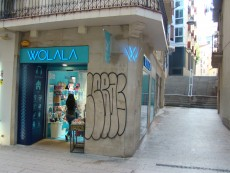 El Celler Reial de Lleida: un patrimoni desconegut
