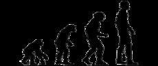 Los chimpancés también son republicanos