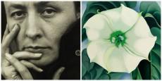 Georgia O'keeffe. Jimson Weed/White Flower, no 1