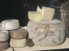 Sorteig tastos i activitats a la Mostra de formatges artesans de Catalunya