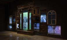 Mat Collishaw. The End of Innocence