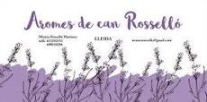 II Floració de la Lavanda - Aromes de Can Rosselló