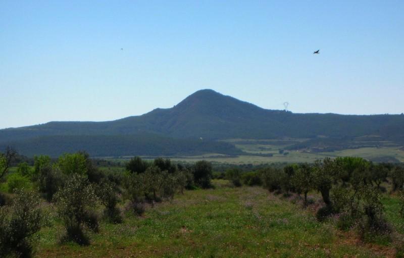 Punta de Montmaneu