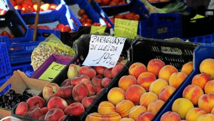 La fruita de pinyol, per sota de costos per la pressió de la distribució i la sobreoferta