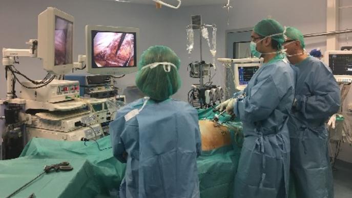 Curs de cirurgia abdominal a l'hospital Arnau