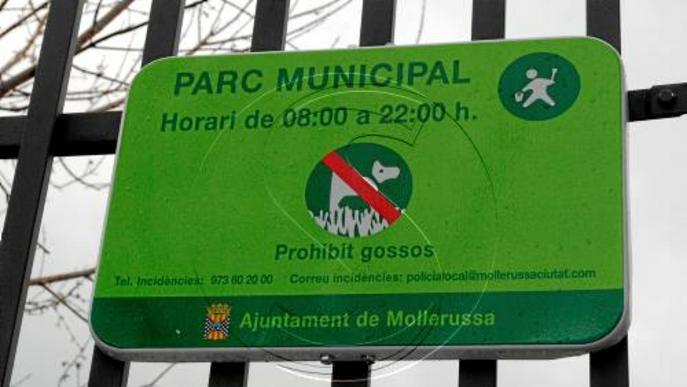 Mollerussa multarà amb mil euros l'abandó de gossos