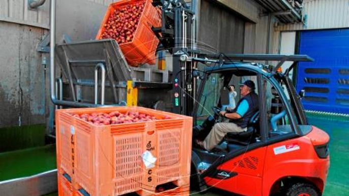 Brussel·les anuncia 125 milions més per a fruita i verdura vetada per Rússia
