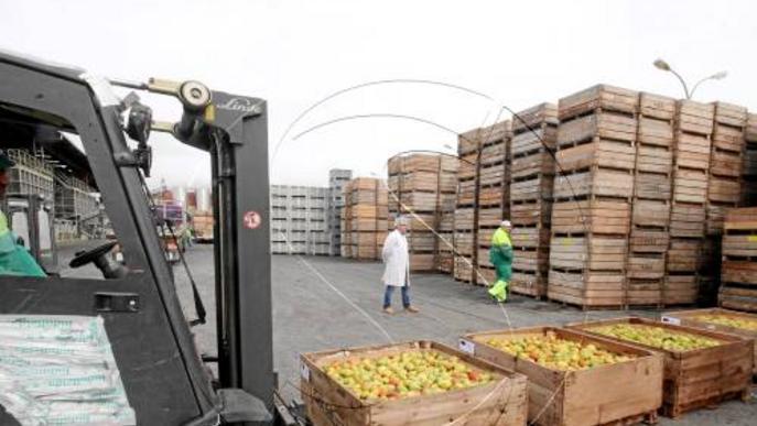 La fruita de pinyol perd 138 milions aquest estiu