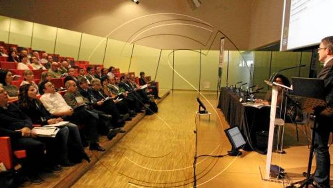 Les cooperatives de Lleida facturen més del 50 per cent de Catalunya i són les més grans