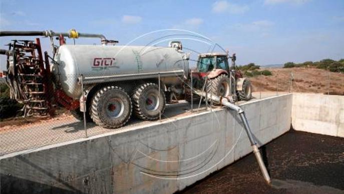 Pagesos de Lleida veuen desfasada la normativa d'aplicació dels purins com a fertilitzants