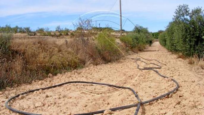 Detinguts per robar cable a Castelldans i deixar el poble sense telèfon