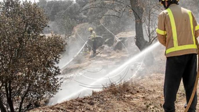 Cremen 6 hectàrees de vegetació agrícola a les Pallargues