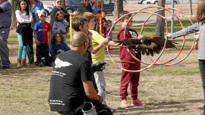 Alpicat obrirà la Festa de la Mascota a més comarques