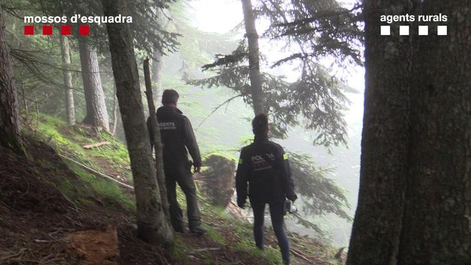 ⏯️ Detingut un home relacionat amb la mort per enverinament de l'os Cachou