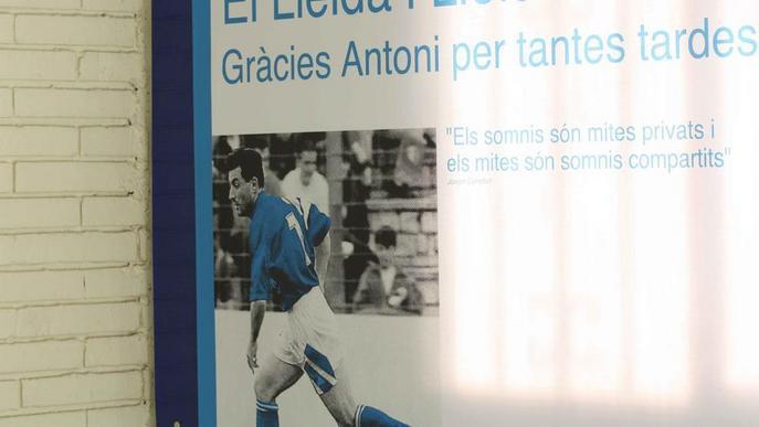 Un Lleida Esportiu renovat