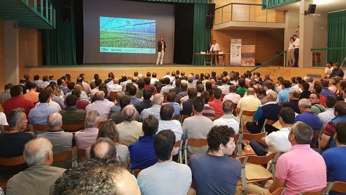 Lleida triplica des del 2007 les finques d'ametllers en reg
