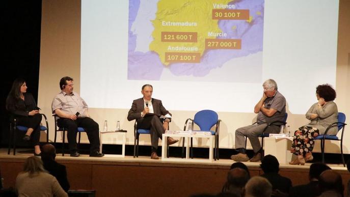 La curta collita de fruita de pinyol es repeteix a Europa, al caure un 8%