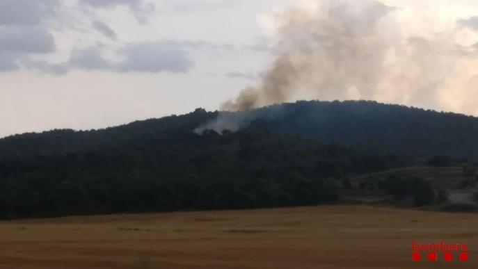Els Bombers extingeixen un foc de vegetació a Artesa de Segre