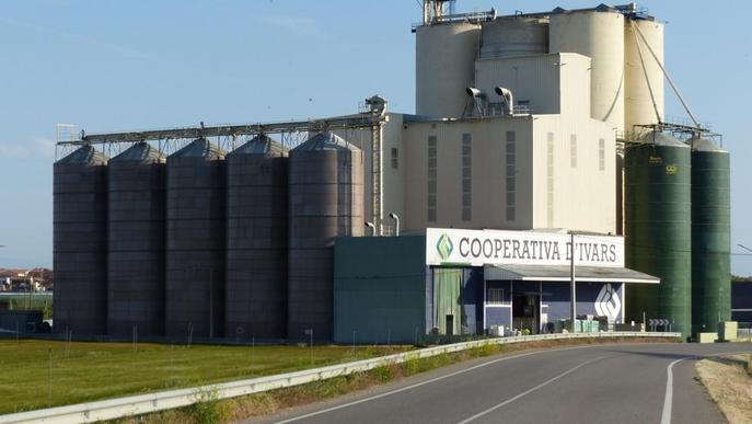 La Cooperativa d'Ivars rep un certificat de qualitat pels pinsos