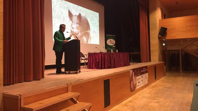 JARC insta que s'extremi la vigilància per la pesta porcina