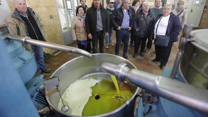 Celebrant l'oli d'oliva